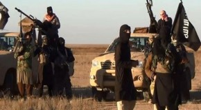 ISIL completely fabricated enemy by US: Former CIA contractor