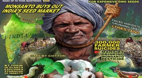 India: Selling Out To MonsantoIndia: Selling Out To Monsanto. GMOs and the Bigger Picture. GMOs and the Bigger Picture