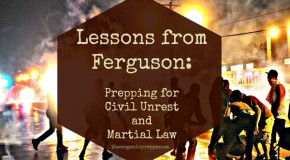 Lessons from Ferguson: Prepping for Civil Unrest and Martial Law