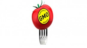 Respected Analyst Says GMOs Could Destroy Life on the Planet