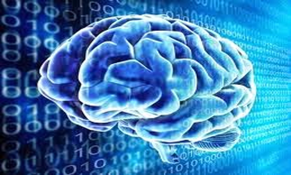 Robots Receive Internet Brain For Machine Learning