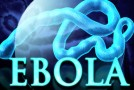 Ebola: one covert op feeds into another