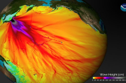 How Badly Is Fukushima Radiation Damaging the Pacific Ocean?