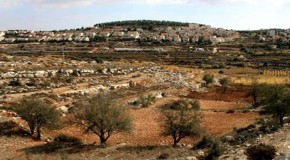 Israel to appropriate 400 hectares in West Bank for 'state use'