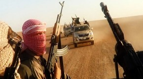 The Roots of ISIS
