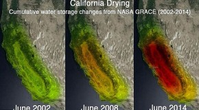 California Drying: Satellite images reveal how record-breaking drought has browned the Golden State