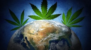 Marijuana's History: How One Plant Spread Through the World