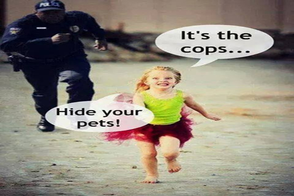 Officer Gloats and Reveals Why He is Free to Shoot Your Dogs