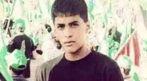 US: Palestinian teenager killed by Israeli forces was American