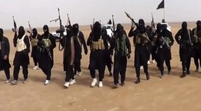 ​1,000 per month: US airstrikes fail to stem tide of foreign fighters