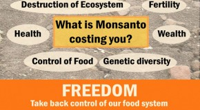 Hey, Monsanto! Were Anniston and Nitro just conspiracy theories too?