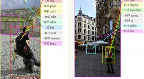 New 'Artificial Intelligence Software' Capable of 'Near Human-Level' Image-Recognition