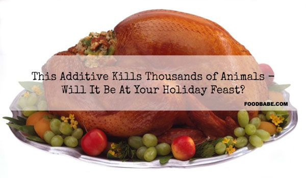 This Drug Has Sickened Thousands of Animals – Will It Be At Your Holiday Feast