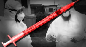Watch out: genetically engineered Ebola vaccine