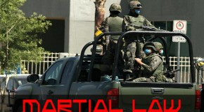 What Does Societal Collapse and Martial Law Look Like?