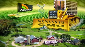 Who is Gary Hirshberg, and why is he bankrolling a losing anti-GMO campaign?