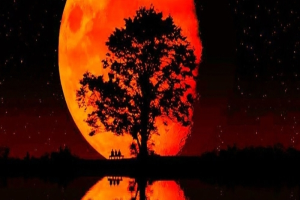 'Blood Moons' discoverer 'More judgment coming'