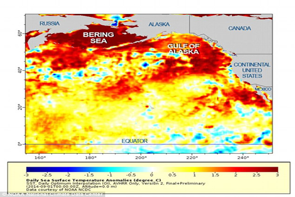 Mysterious Blob In Pacific Ocean Is Fukushima Death And It's Coming For Us All