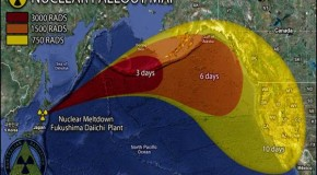 Nuclear Disaster in Fukushima and Death of the Pacific Ocean