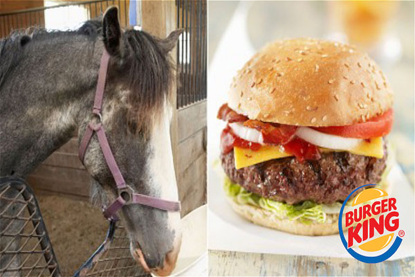 Disturbing Burger King Admits Burgers Contain Horsemeat
